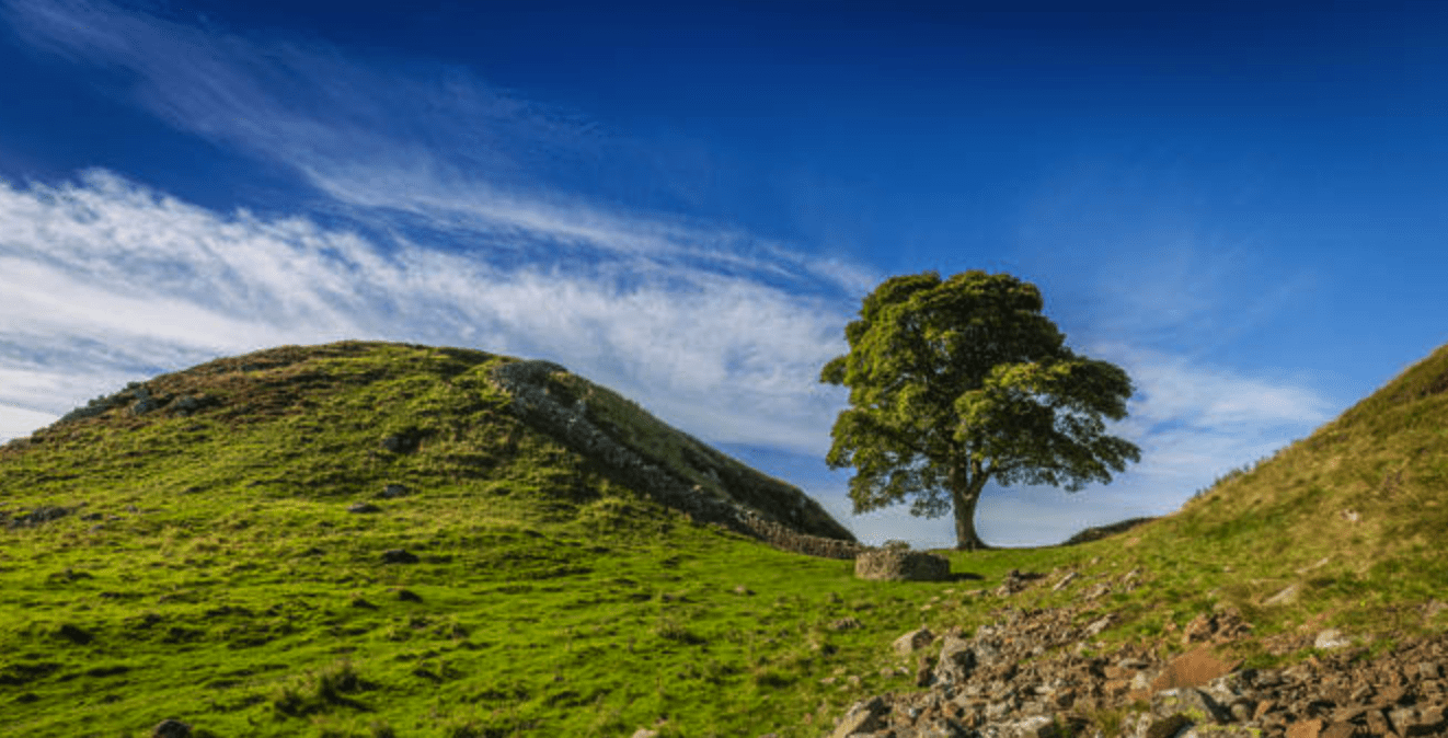 Walk Northumberland